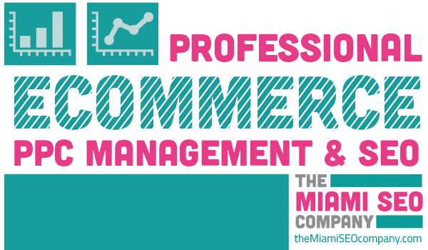 Professional Ecommerce PPC Management & SEO